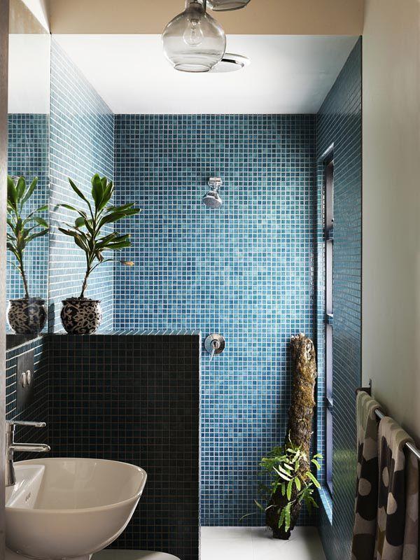 Walk in shower half wall